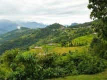Dhampusdorp tussen padievelden, Nepal Stock Afbeelding