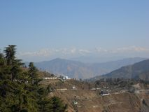 Dhanolti Mussoorie, Uttarakhand, Indien Royaltyfria Bilder