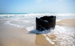 Tree stump on a beach royalty free stock images