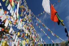 Dharamsala, banderas budistas del rezo imagenes de archivo