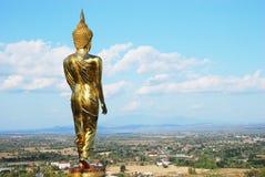 dharma步骤 免版税库存照片