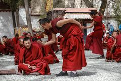 Dharma, das an den Seren Kloster, Tibet debattiert Stockfotos