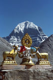 Dharmachakra στη στέγη του βουδιστικού gompa Driraphuk μοναστηριών Στοκ Εικόνες