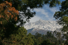 Dhauladhar himalayn range from dharamsala town India. Himalayan mountain range from dharamsala, J\Kangra, Himachal, india Stock Photography