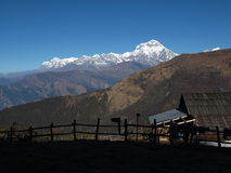 Dhaulagiri in the morning Stock Images