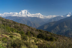 Dhaulagiri mountain peak view from Ghorepani village, ABC, Pokhara, Nepal stock image
