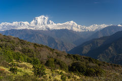 Dhaulagiri mountain peak view from Ghorepani village, ABC, Pokhara, Nepal stock images