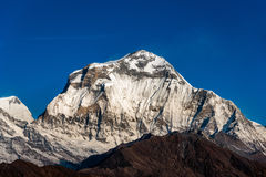 Dhaulagiri mountain peak view from Poon Hill at Nepal. Dhaulagir Stock Photography