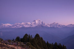 Dhaulagiri mountain range from Poon Hill viewpoint Royalty Free Stock Image
