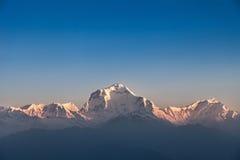 Dhaulagiri mountain on sunrise Royalty Free Stock Photography