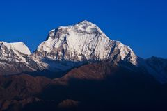 Dhaulagiri Peak. In the Nepal Himalaya - view from Poon Hill. Dhaulagiri (8,167 m) is the seventh highest mountain in the world Royalty Free Stock Photo