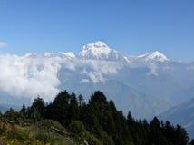 Dhaulagiri range from Poon Hill, Nepal royalty free stock image