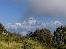 Dhaulagiri range from Poon Hill, Nepal. Dhaulagiri range from Poon Hill - one of the most visited Himalayan view points in Nepal, view to snow capped Himalaya royalty free stock photo