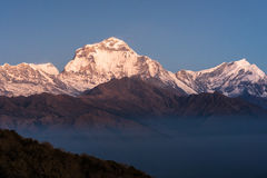 Dhaulagiri snow mountain peak during sunrise Stock Photos