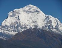Dhaulagiri Szczyt Obraz Royalty Free