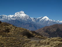 Dhaulagiri and Tukuche Peak. High mountains of the Himalayas. Annapurna Conservation Area, Nepal royalty free stock images