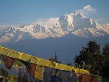 Dhaulagiri view from Poon Hill. Ghorepani poonhill trek royalty free stock images