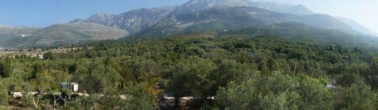 Dhermi,阿尔巴尼亚的惊人的本质 库存图片