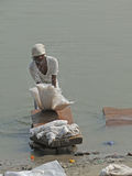 Dhobiwallah washes clothes in the Ganges River Stock Images