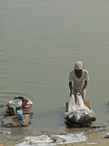 Dhobiwallah washes clothes in the Ganges River Royalty Free Stock Photos