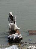 Dhobiwallah washes clothes in the Ganges River Stock Photos