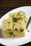 Dhokla is a savory snack from India Stock Image