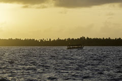 Dhoni in sailing in the sunset in maldives Stock Photography