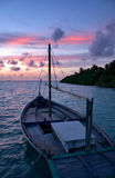 Dhoni in Sunset. Traditional maldivian dhoni in the sunset Stock Photography