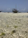 Dhow on the beaches of Zanzibar Royalty Free Stock Photos