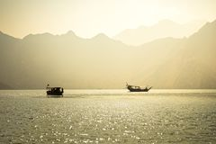 Dhow boats near the Musandam stock photos
