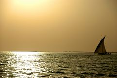 Dhow on a sunset. Dhow sailing on a sunset in the gulf Royalty Free Stock Photography
