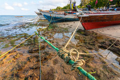 Dhow traditional fishing and cargo vessel Royalty Free Stock Image