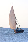 Dhow traditional sailing vessel Royalty Free Stock Images