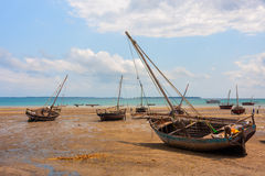 Dhow traditional sailing vessels moored Royalty Free Stock Images