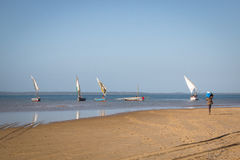 Dhows στην ακτή Barra κοντά σε Tofo Στοκ εικόνες με δικαίωμα ελεύθερης χρήσης