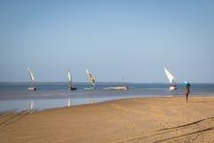 Dhows alla costa di Barra vicino a Tofo Immagini Stock Libere da Diritti