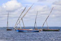 Dhows ankrade av ön av Mocambique Royaltyfri Fotografi