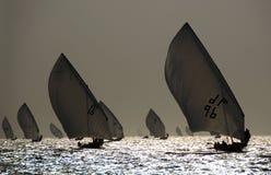 dhows som seglar silhouetten Arkivfoton