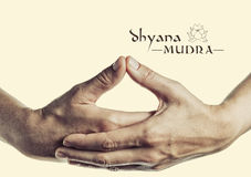 Dhyana mudra. Yogic hand gesture.  on toned background Stock Image