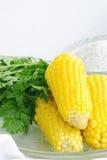 Diät mit Mais Lizenzfreies Stockfoto