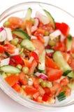 Diätetischer Salat von den Tomaten, von den Gurken und vom Rettich Stockfoto