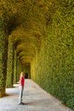 ` DI AGLIE, TORINO/ITALIA - CIRCA IL 5 AGOSTO 2016: Serra verde del castello del ` di AGLIE il 5 agosto 2016, nel ` di AGLIE Fotografia Stock
