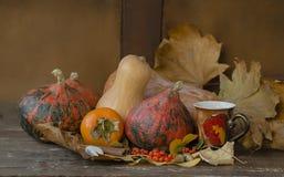 Di autunno lifes ancora con le zucche ed il cachi Fotografie Stock Libere da Diritti