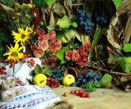 Di autunno vita ancora Fotografie Stock