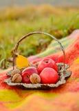 Di autunno vita ancora Fotografie Stock Libere da Diritti