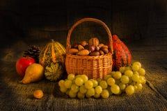 Di autunno vita ancora immagini stock libere da diritti