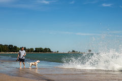 9/6/2014 di Chicago - cane di camminata dell'uomo a Lakeshore Immagine Stock
