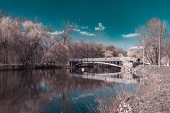 ` di Dubovka del ` del parco Fotografia Stock