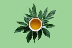 Di erbe fragrante e sano fresco o tè verde in una tazza su un fondo verde Tempo del tè royalty illustrazione gratis