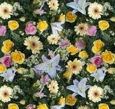 di fiori tappeto 库存图片